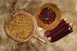 Native American Foods