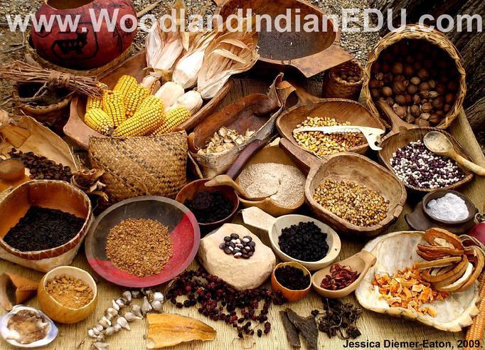 Ojibwa food sources